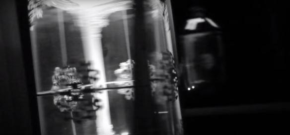 Lantern Still DL - Video